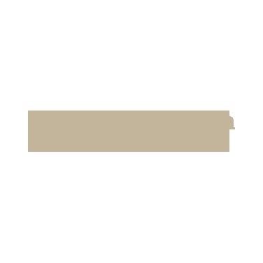 Spandrel Development Partners: Northwestern Mutual